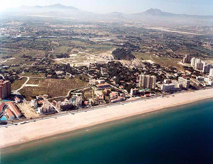 alto Español piel oscura en Alicante