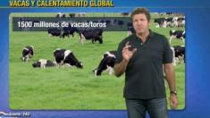 Vacas vs Calentamiento Global