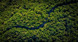El Amazonas registra el septiembre con menos incendios de los últimos 20 años