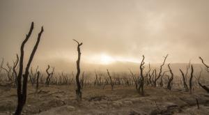 ¿Es cierto que España se convertirá en un gran desierto?