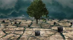 ¿Qué planes va a presentar España en la Cumbre sobre el Clima de la ONU?