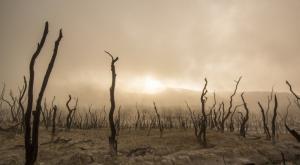 Los fenómenos meteorológicos extremos matan a 500.000 personas