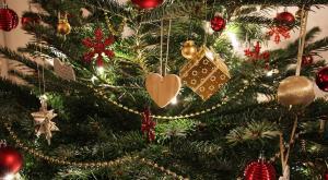 Sin árboles de Navidad por el Cambio Climático