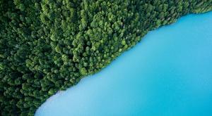Reconecta con la naturaleza con estas 10 imágenes