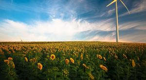 10 retos medio ambientales a los que nos enfrentamos este 2021